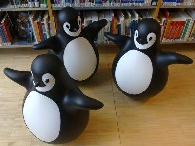 Pingyt