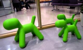 Eero Aarnion Puppyt ostettiin Amsterdamin matkan jälkeen. Tämä oli ensimmäinen askel tilauudistuksessa.
