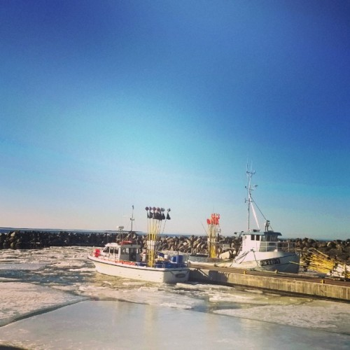 Trullevin satama