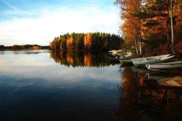 Syksyinen metsä- ja järvimaisema